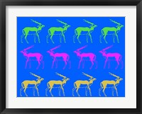 Framed Safari 10
