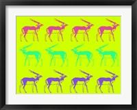 Framed Safari 12