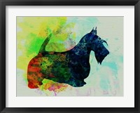 Framed Scottish Terrier Watercolor