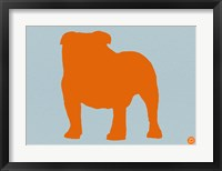 Framed French Bulldog Orange