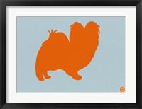 Framed Papillion Orange