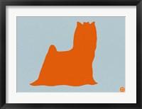 Framed Yorkshire Terrier Orange