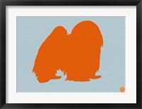 Framed Japanese Chin Orange