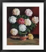 Framed Chrysanths