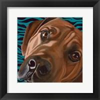 Framed Dlynn's Dogs - Bunsen