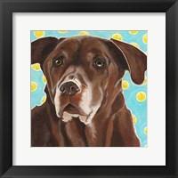 Framed Dlynn's Dogs - Get Your Ball