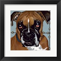 Framed Dlynn's Dogs - Rocco