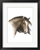Wild Horse I Framed Print