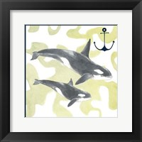 Framed Whale Composition III