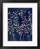 Midnight Haze I Framed Print