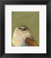 Framed Bird Portrait I