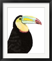 Framed Watercolor Toucan