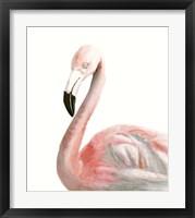 Framed Watercolor Flamingo