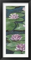 Tranquil Lilies I Framed Print
