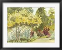 Framed Plein Air Garden VI