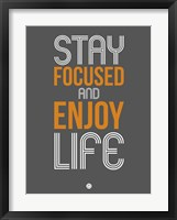 Framed Stay Focused and Enjoy Life 2