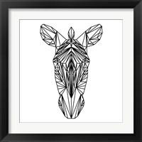 Framed Zebra on White