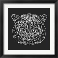 Framed Tiger on Black