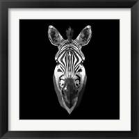 Framed Black Zebra Head