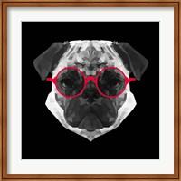 Framed Pug in Red Glasses