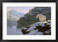 A Touch Of Warmth Framed Print