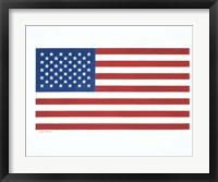 Framed American Flag 1