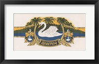 Framed Swan