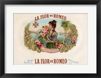 Framed La Flor De Romeo