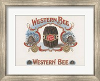 Framed Western Bee
