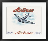 Framed Airliner