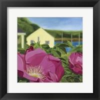 Framed Beach Rose