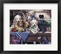 Framed Five Puppies