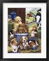 Framed Puppy Hayday