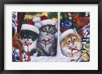 Framed Cats In Window