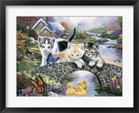 Framed Purrfect Day