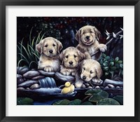 Framed Puppies To The Rescue