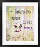 Spoiled Dog Framed Print
