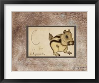 C is For Chipmunk Framed Print