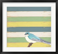 Little Blue Bird Framed Print