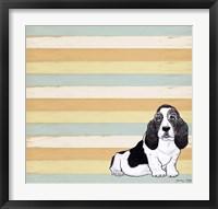 Framed Basset Hound 1