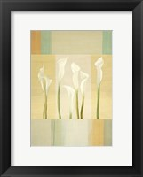 Framed Calla Lily Dance I