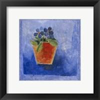 Flower Pot  1 Framed Print