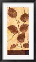 Foliage 1 Framed Print