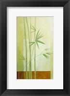 Framed Reeds 1