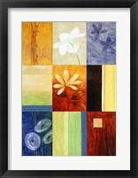 Rainbow Abstract 2 Framed Print