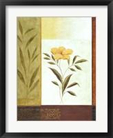 Orange Bloom 1 Framed Print