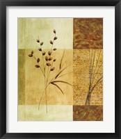 Wheat I Framed Print