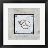Sea Shell on Blue I Framed Print