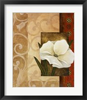 Framed White Delight I