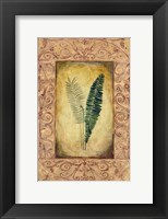 Framed Decorative Ferns II